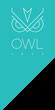 Комплектующие OWL 1975