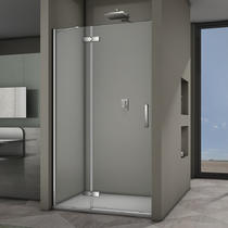 Veconi Душевая дверь VN-64 120*195