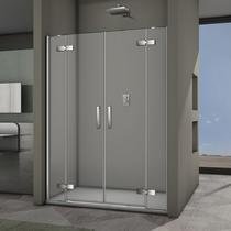 Veconi Душевая дверь VN-65 150*195